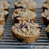 The Best Blueberry Chia Streusel Muffins