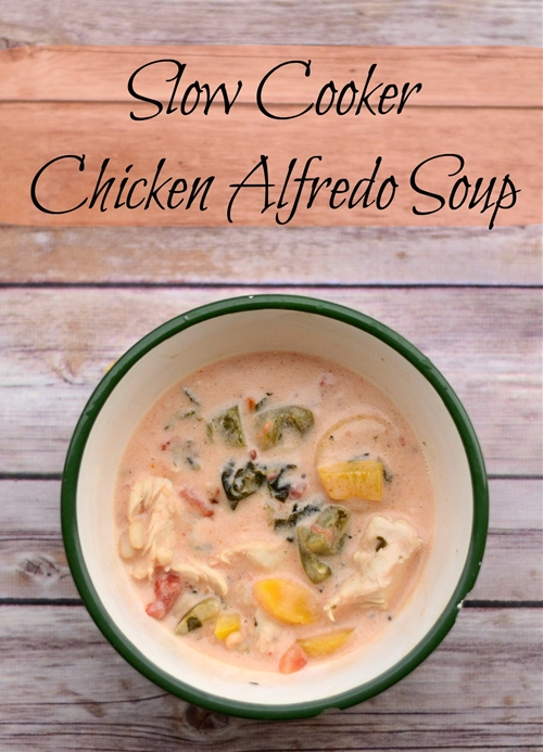 Slow Cooker Chicken Alfredo Soup