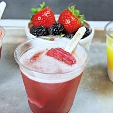 Fruttare Popsicle Drinks