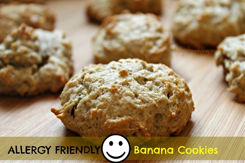 Allergy Friendly Banana Cookies - Foody Schmoody Blog | Foody Schmoody