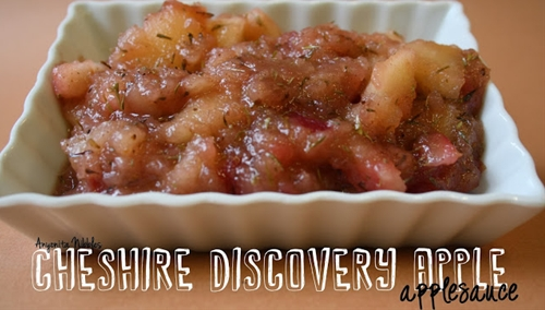 Cheshire Discovery Applesauce