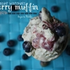 Weight Watchers Blueberry Muffin Ice Cream