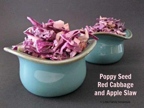 Poppy Seed Red Cabbage and Apple Slaw
