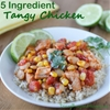 5 Ingredient Tangy Chicken