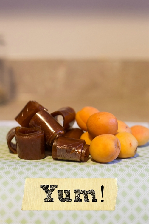 3 Ingredient Fruit Leather