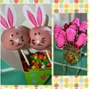 Easter Bunny Cake Pops and Chocolate Peeps