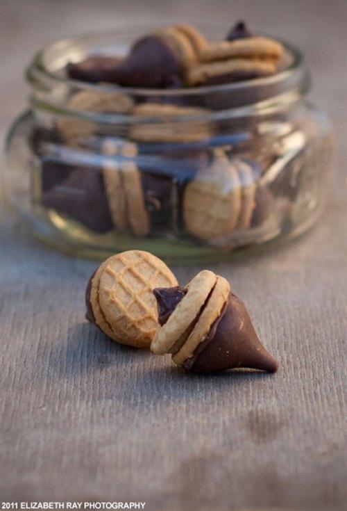 peanut butter-chocolate acorn cookies | soul food