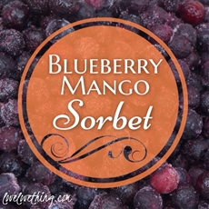 Blueberry Mango Sorbet