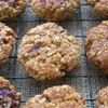 Oaty Ginger Chocolate Biscuits