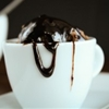Chocolate balsamic hot fudge sauce