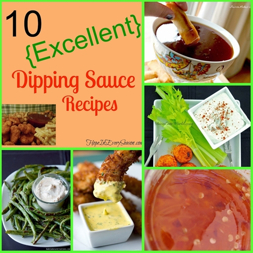 10 {Excellent} Dipping Sauce Recipes
