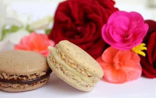 Easy French Macaroons
