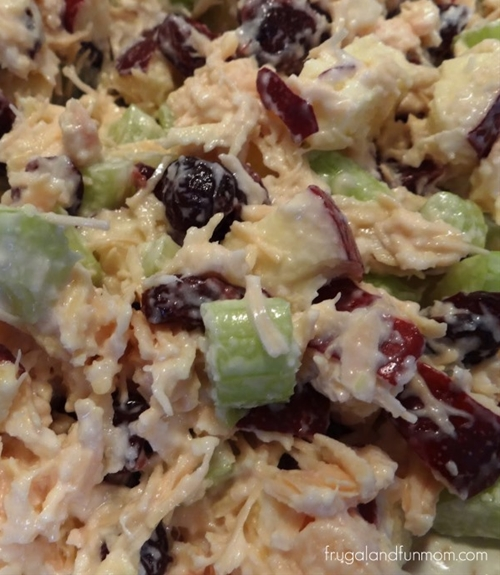 Cranberry and Apple Chicken Salad