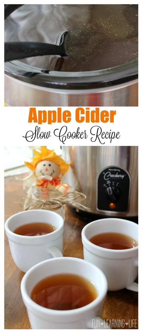 Apple Cider Slow Cooker