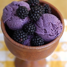 Creamy Blackberry Frozen Yogurt