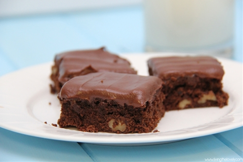 Best One-Bowl Brownie