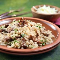 Dried mushroom and gruyère cheese risotto