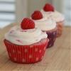 Raspberry Dream Cupcakes
