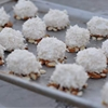 Almond Coconut Christmas Balls