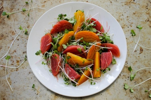 Beet and Microgreen Salad with Grapefruit Vinaigrette