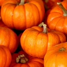 Pumpkin Pie Superfood Smoothie