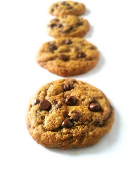 Chewy Chocolate Chip Pumpkin Cookies