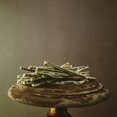 basil homemade pasta