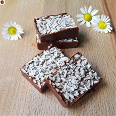 Melt-In-Your-Mouth Coconut Chocolate Fudge