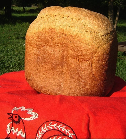 Whole Wheat Bread Machine Bread