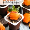 Easy Carrots & Dirt Pudding Cups
