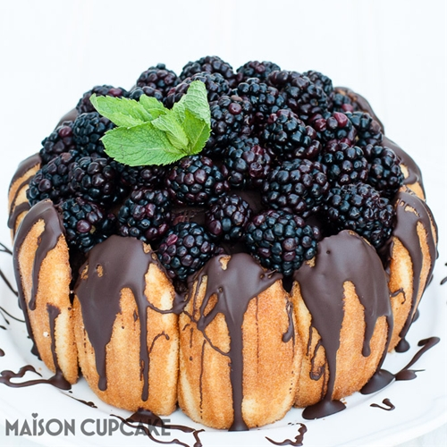 Easy Chocolate Blackberry Charlotte Dessert Cake