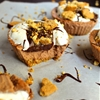 Guiltless Smores Protein Cheesecake