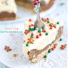 Sweet and Salty Gingerbread Pie