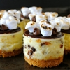 S'mores Mini Cheesecakes