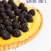 Blackberry Lime Tart