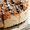 No Bake Samoa Cheesecake