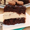 Chocolate Peanut Butter Pie Cake