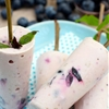 Raw Blueberry Coconut Dreamsicles