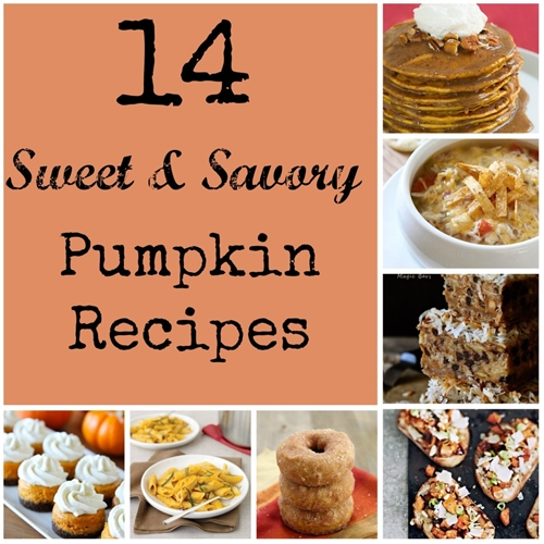 14 Sweet and Savory Pumpkin Recipes | Detroit Mommy Bloggers