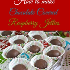 Chocolate Covered Raspberry Jellies Candy
