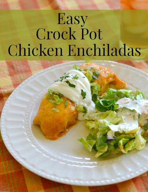 Easy Crock Pot Chicken Enchiladas