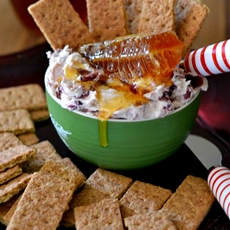 Honey Cranberry Holiday Dip