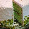 Pistachio Cake (a.k.a. Watergate Cake)