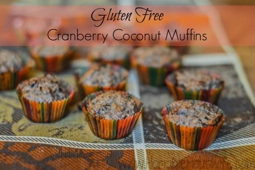 Gluten Free Cranberry Coconut Muffins