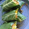 Raw Vegan Burrito Wraps