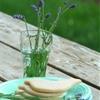 Hibiscus Lavender Shortbread Cookies