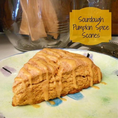 Sourdough Pumpkin Spice Scones