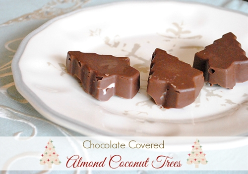 Chocolate Covered Almond Coconut Trees
