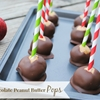 Chocolate Peanut Butter Pops
