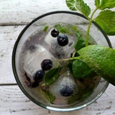 Skinny Blueberry Mojito